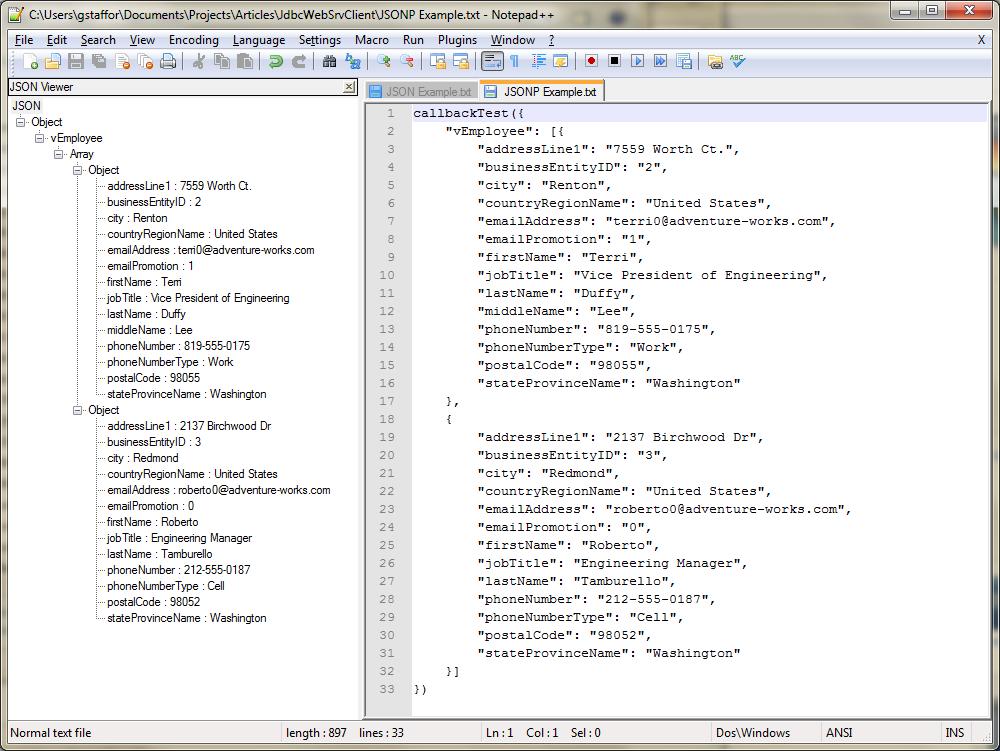 05c - Notepad++ JSON Viewer