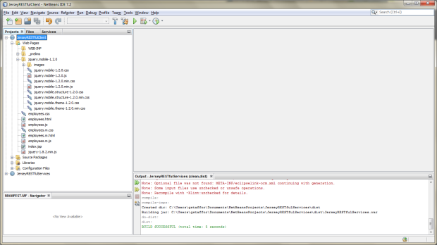 JerseyRESTfulClient Project View in NetBeans