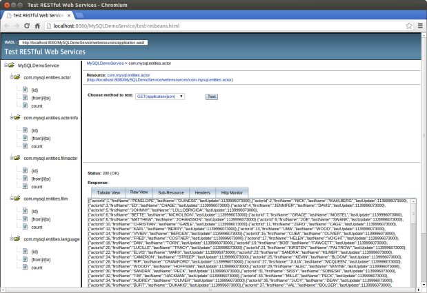 Testing RESTful Web Services from NetBeans