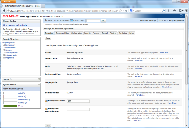 The Overview Tab Reviews the Installed Application's Configuration