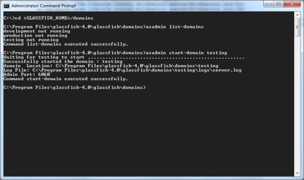 Check and Start GlassFish Domains
