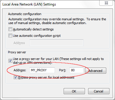 LAN Settings - Proxy Server