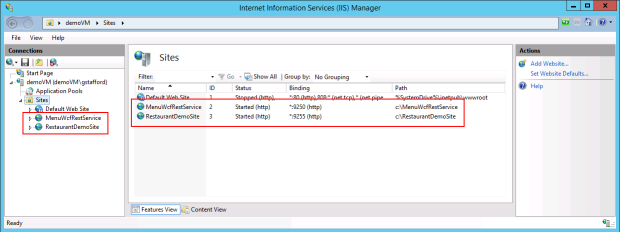 Final View of IIS Sites Running on Azure VM