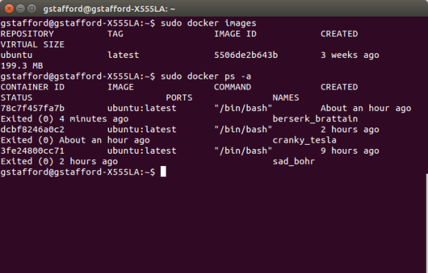 Displaying Docker Ubuntu Image and Containers
