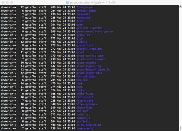 Some of the 225+ npm Packages Installed