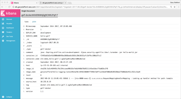 Docker Log Aggregation and Visualization Options with the